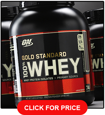 Optimum Nutrition Gold Standard Whey Protein Powder Chocolate