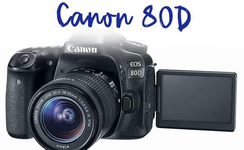 Canon 80D at costco