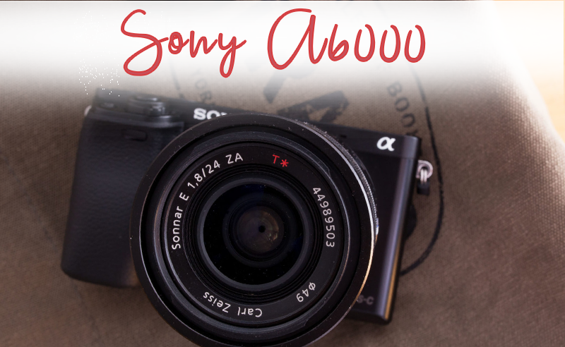 Sony A6000 Costco Review