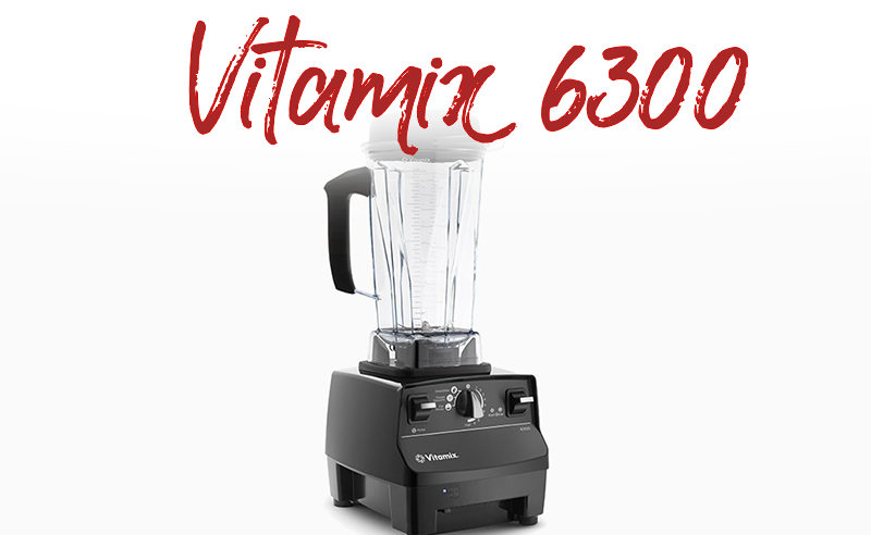 vitamix 6300 at costco