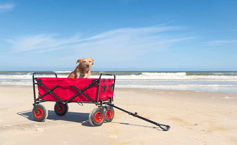 Costco Beach Cart